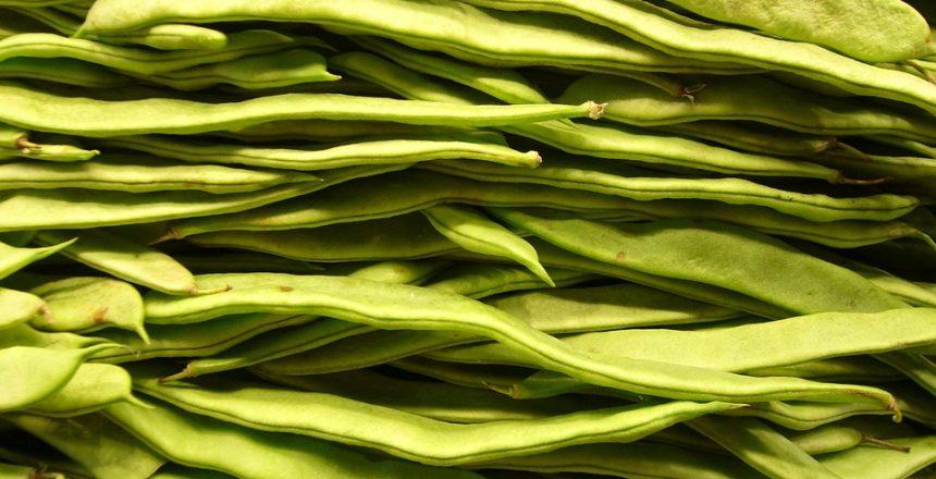 beans-4785_960_720